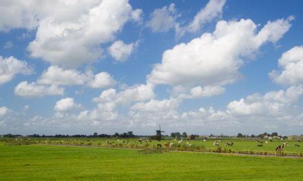 7 GIORNI IN OLANDA IN BICI E BARCA: L'ITINERARIO